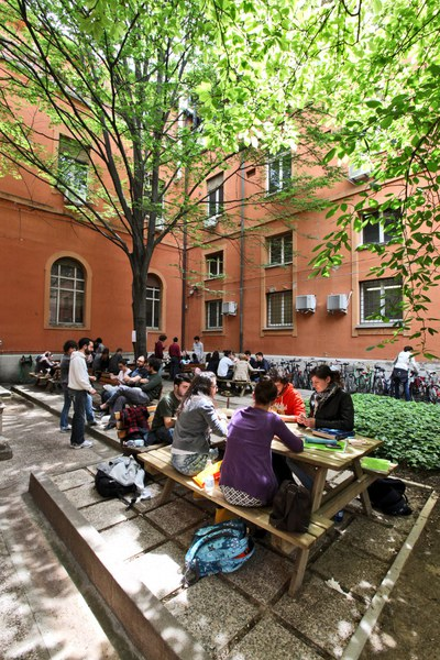 Il cortile sul retro con la magnolia giapponese e i tavoli per lo studio e lo svago