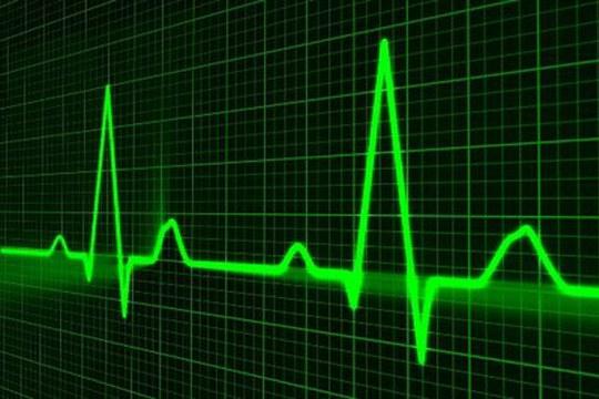 Al via Lion-Hearted: luce e nanomateriali per ripristinare le funzionalità del cuore
